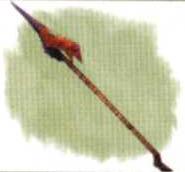 File:Dragon's Hair.png