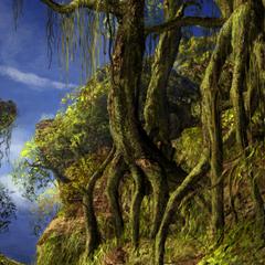 Iifa Tree's branches.