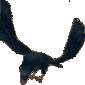 File:Vika Raven (Transformed) Sprite.png