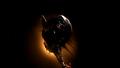 ReaverBoardingShip-SerenityEp.png
