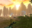 Endor Clearing