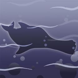 Smiling-porpoise
