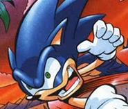Crazy Sonic-1