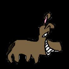Donkey pet