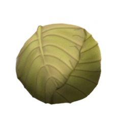 File:Huedcabbage.png