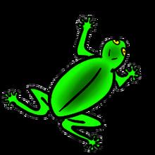 Pet Froschinger