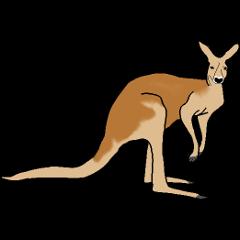 File:Pet Kangaroo.png