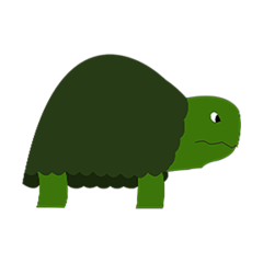File:Terry the tortoise pet.png
