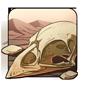 Sparrow Skull