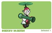 Radley Madish background