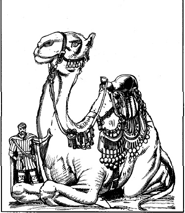 File:2e Camel of the Pearl.jpg