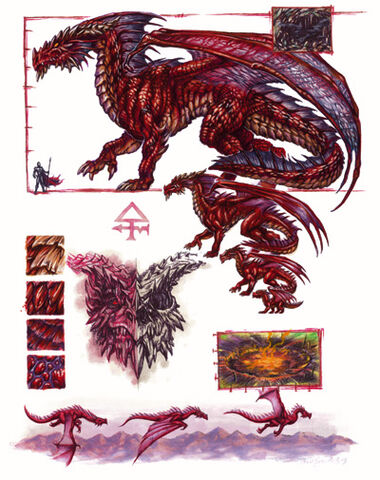 File:Red dragon anatomy - Ron Spencer.jpg