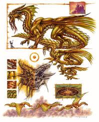 Gold dragon anatomy - Ron Spencer