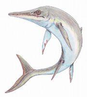 Temnodontosaurus plat1DB