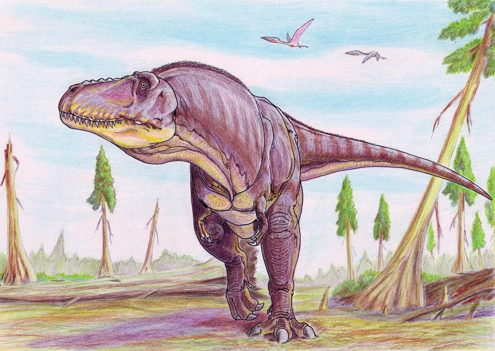 Tarbosaurus | Fossil Wiki | Fandom powered by Wikia