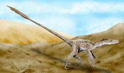 Velociraptor BW