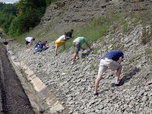 Wooster students collecting fossils