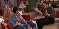 The One With Phoebe's Uterus