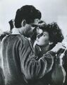 Fright Night Chris Sarandon Amanda Bearse.JPG