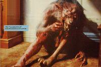 Fright Night 1985 Evil Ed Werewolf