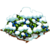 Mnt. Blueberries-icon