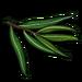 Eucalyptus Leaf-icon