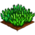 Foxtail Fern-icon