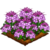 Spider Flower-icon