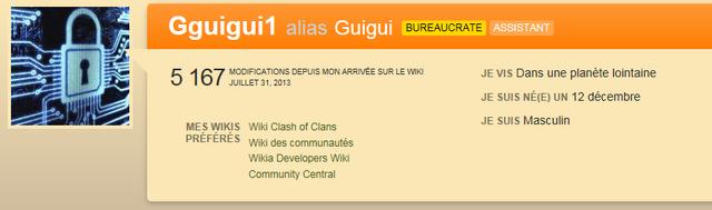 Fichier:Profil Gguigui1.png