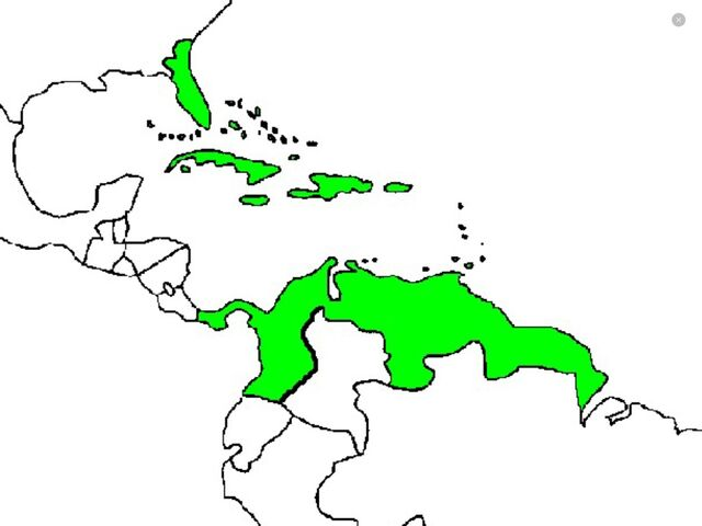 File:Caribbean empire.jpg