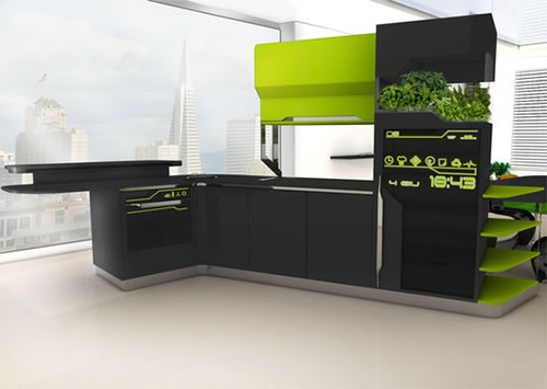 File:Future Kitchen.jpg