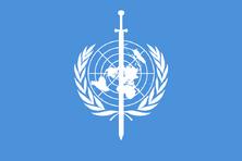Flag 959