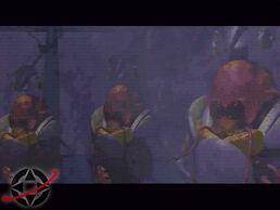 Martian Elders