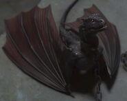 Drogon 2x10