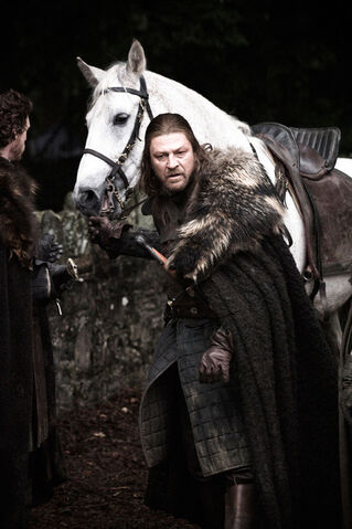 File:Ned & his horse.jpg