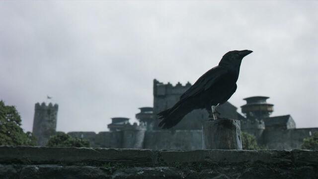 File:Raven 1x10.jpg
