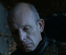 Lannister bannerman 2