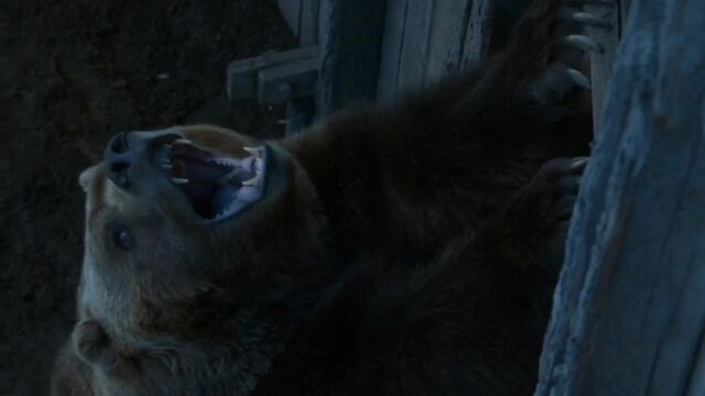 File:Little Bart the Bear.jpg