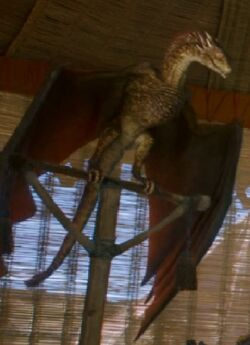 Viserion Matured S3E7