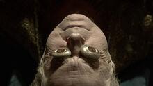 Jon Arryn funeral bier.jpg