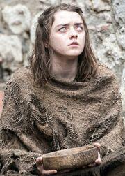 Arya Season 6 (Crop)