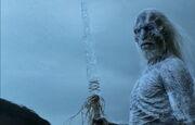WhiteWalker 2x10