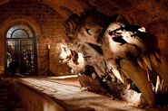 Dragon Skull Cave