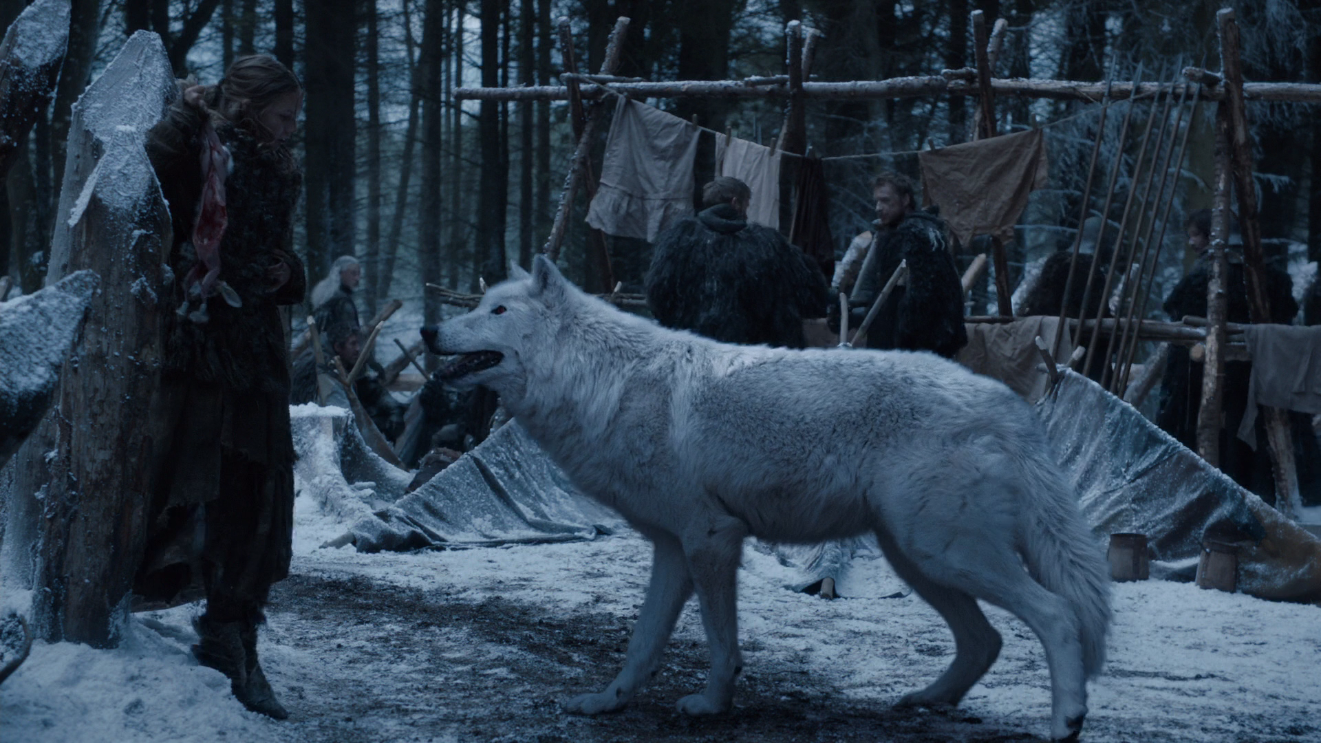 Dire Wolf Source: Game Of Thrones