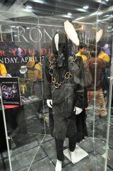 Wondercon-costume-maester