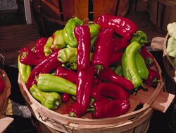 Sweet pepper Cubanelle