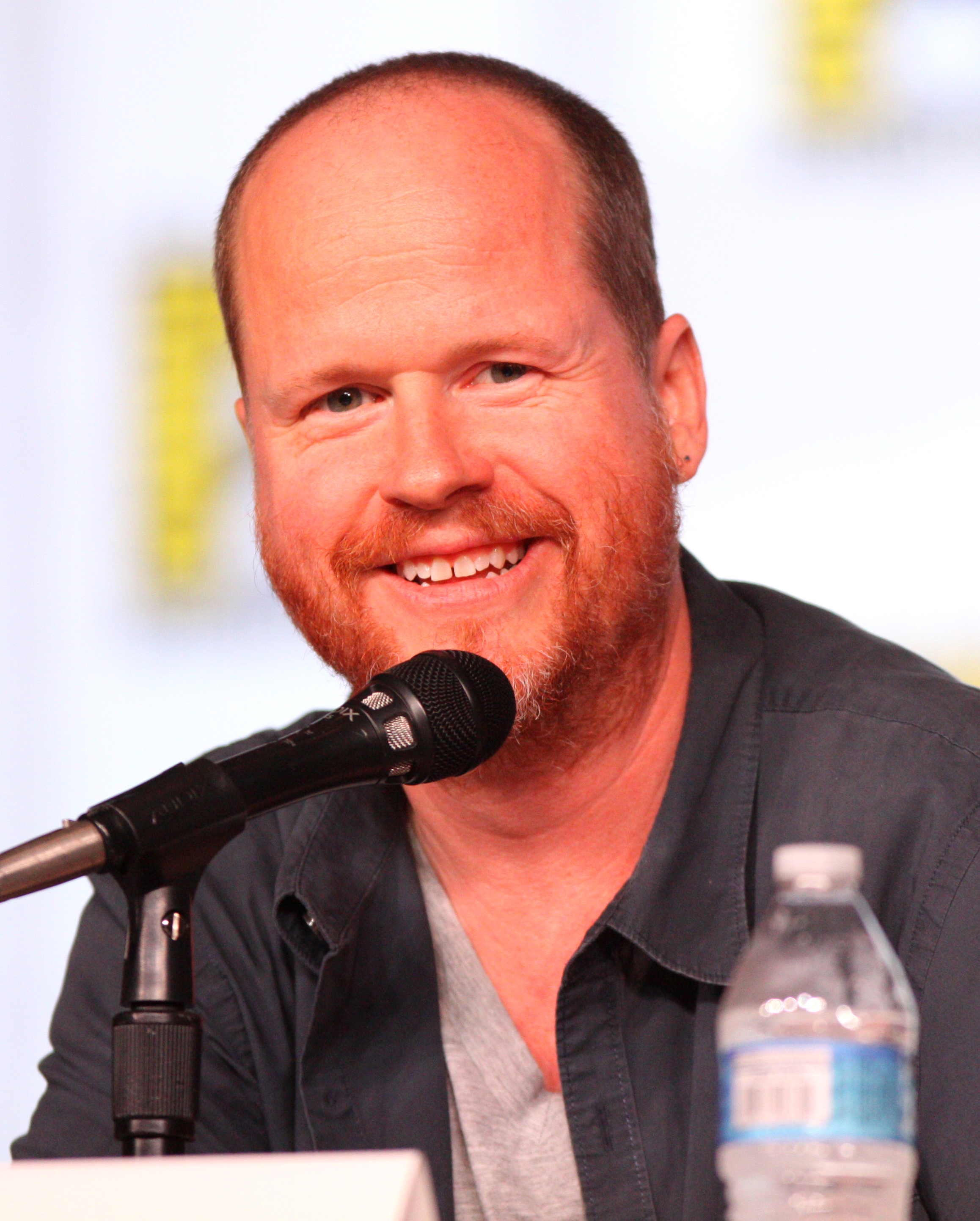 Books/articles on Joss Whedon?
