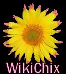 File:WikiChix logo.png