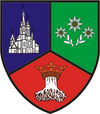 Brasov county coat of arms
