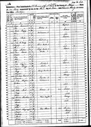1870 census O'Malley Collins